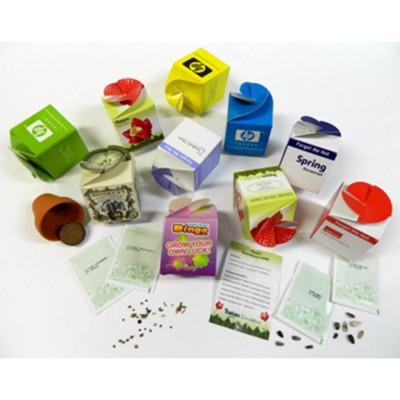 Picture of BESPOKE MINI BOX KIT