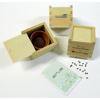 Picture of MINI COFFRET GROWING KIT