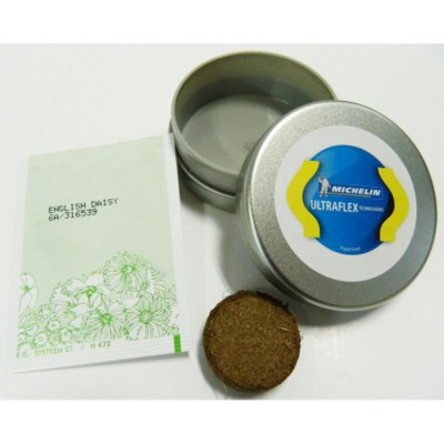 Picture of MINI TIN GROWING KIT