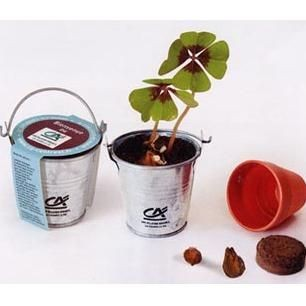 Picture of MINI ZINC BUCKET GROWING KIT