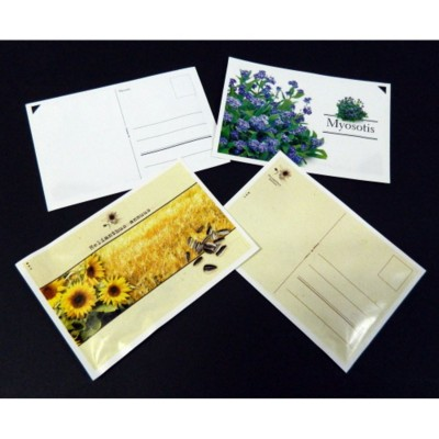 Picture of STANDARD POSTCARD SEEDS PACKET