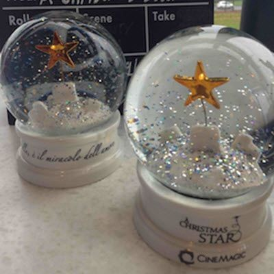 Picture of SNOW GLOBE SHAKER SHAKER