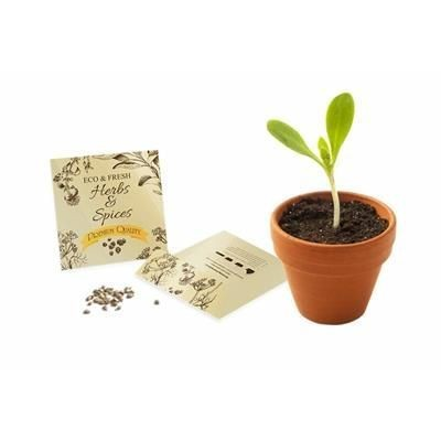 Picture of SMALL SEEDS PACKET ENVELOPE - GLOSS