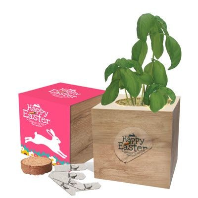 Picture of ECO CUBES