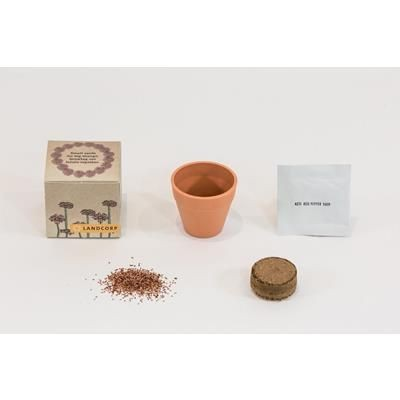 Picture of GROW KIT SINGLE POT BOX