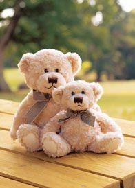 Picture of MUMBLES OTIS SOFT TOY BEAR
