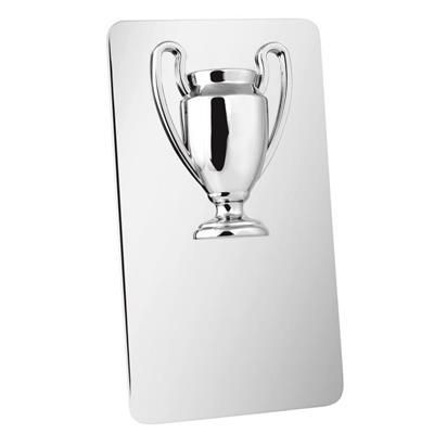 Picture of SILVER CHROME PLATED TROPHY AWARD PLAQUE 160MM X 88MM