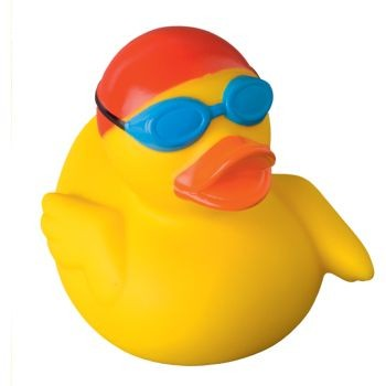 Picture of SWIMMER DUCK