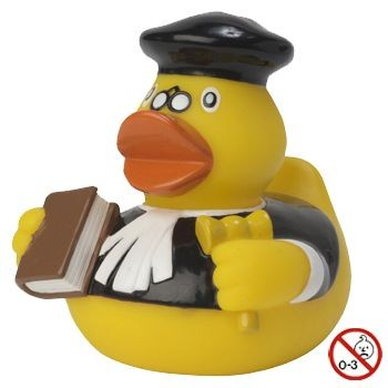 Picture of JUDGE DUCK