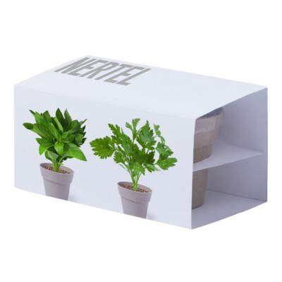 Picture of FLOWERPOT SET NERTEL