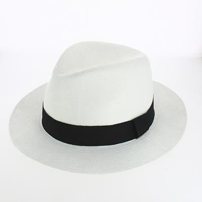 Picture of DAYTON PANAMA HAT with Stitched Band