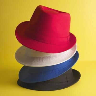 Picture of JACKSON HAT