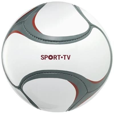 Picture of LIBERTADORES PANEL FOOTBALL in White Solid-grey