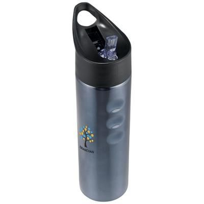 Picture of TRIXIE 750 ML STAINLESS STEEL METAL SPORTS BOTTLE in Titanium