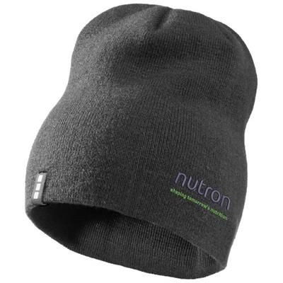 Picture of LEVEL BEANIE in Grey