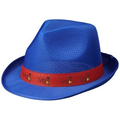 Picture of TRILBY HAT in Blue