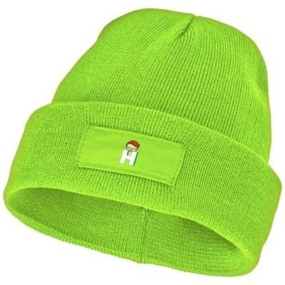 Picture of BOREAS BEANIE with Patch in Apple Green