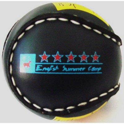 Picture of PVC MOCK LEATHER COVERED HURLEY BALL