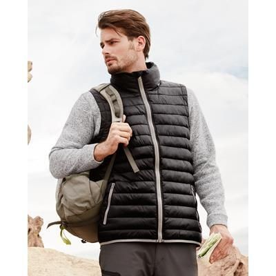 Picture of ACTIVE BY STEDMAN MENS PADDED VEST