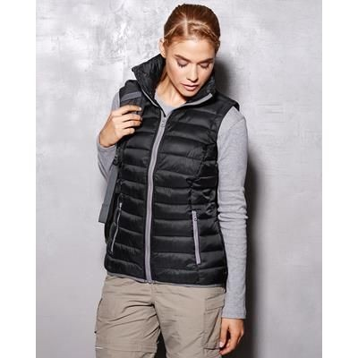 Picture of ACTIVE BY STEDMAN LADIES PADDED VEST