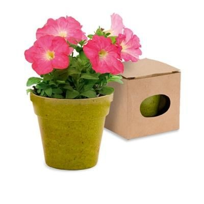 Picture of FLOWERPOT with Seeds Included