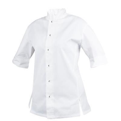 Picture of FITTED CHEF COAT in Egyptian Cotton