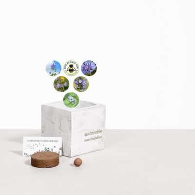 Picture of SMALL CONCRETE POT - GROW KIT - SKY MEADOW - MARBLE