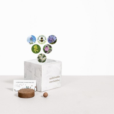 Picture of SMALL CONCRETE POT - GROW KIT - URBAN MIX - MARBLE