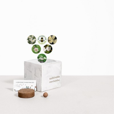 Picture of SMALL CONCRETE POT - GROW KIT - SNOW MIX - MARBLE