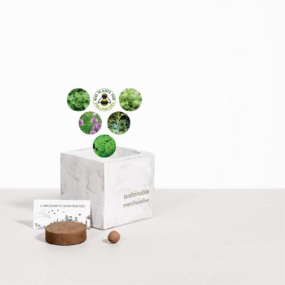 Picture of SMALL CONCRETE POT - GROW KIT - HERB MIX - MARBLE