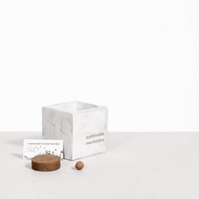 Picture of SMALL CONCRETE POT - GROW KIT - CHRISTMAS TREE - MARBLE