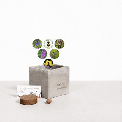 Picture of SMALL CONCRETE POT - GROW KIT - BEE MIX - ROCK