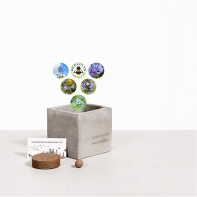 Picture of SMALL CONCRETE POT - GROW KIT - SKY MEADOW - ROCK