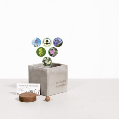 Picture of SMALL CONCRETE POT - GROW KIT - URBAN MIX - ROCK