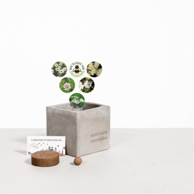 Picture of SMALL CONCRETE POT - GROW KIT - SNOW MIX - ROCK