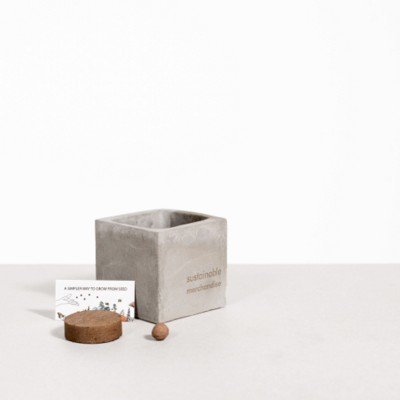 Picture of SMALL CONCRETE POT - GROW KIT - CHRISTMAS TREE - ROCK