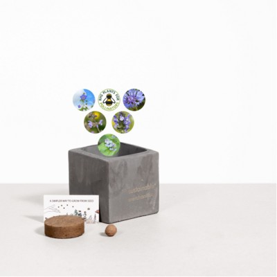 Picture of SMALL CONCRETE POT - GROW KIT - SKY MEADOW - BATTLESHIP