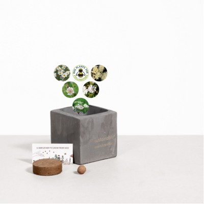 Picture of SMALL CONCRETE POT - GROW KIT - SNOW MIX - BATTLESHIP