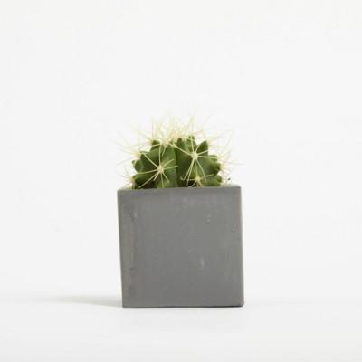 Picture of SMALL CONCRETE POT - CACTUS PLANT - BATTLESHIP
