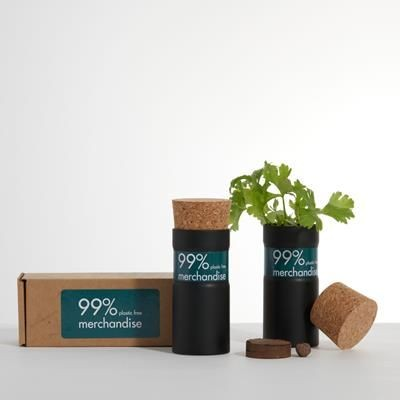 Picture of DESK TOP GARDEN - BOXED - SNOW MIX in Black