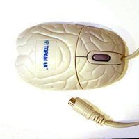 Picture of BRAIN SHAPE COMPUTER MOUSE in White