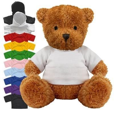 Picture of BLANK PLUSH SOFT TOY JAMES II TEDDY BEAR with Colour Tee Shirt