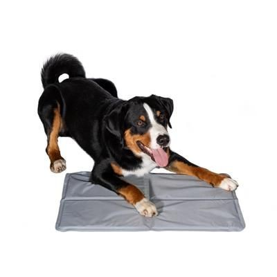 Picture of COOLING MAT FOR ANIMALS CHILL