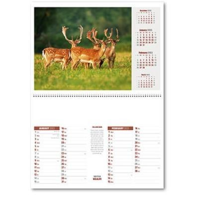 Picture of BRITISH WILDLIFE CENTRAL SPIRAL WALL CALENDAR