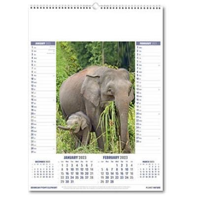 Picture of PLANET NATURE WALL CALENDAR