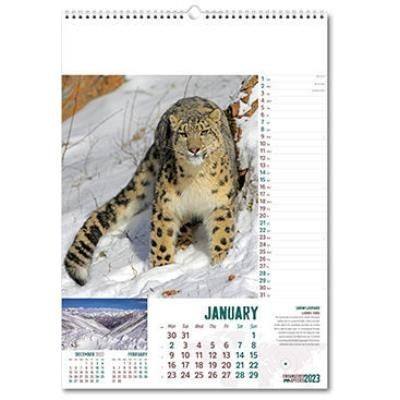 Picture of ENDANGERED SPECIES WALL CALENDAR