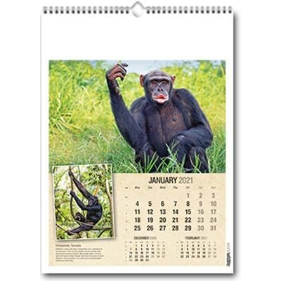 Picture of WORLD WILDLIFE WALL CALENDAR