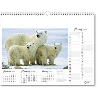 Picture of KINDRED SPIRITS WALL CALENDAR