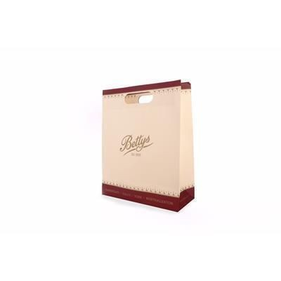 Picture of FULL COLOUR PRINTED PAPER BAG with Rope, Ribbon or Cut-out Handle
