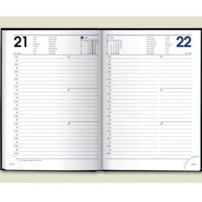 Picture of A5 DESK DIARY